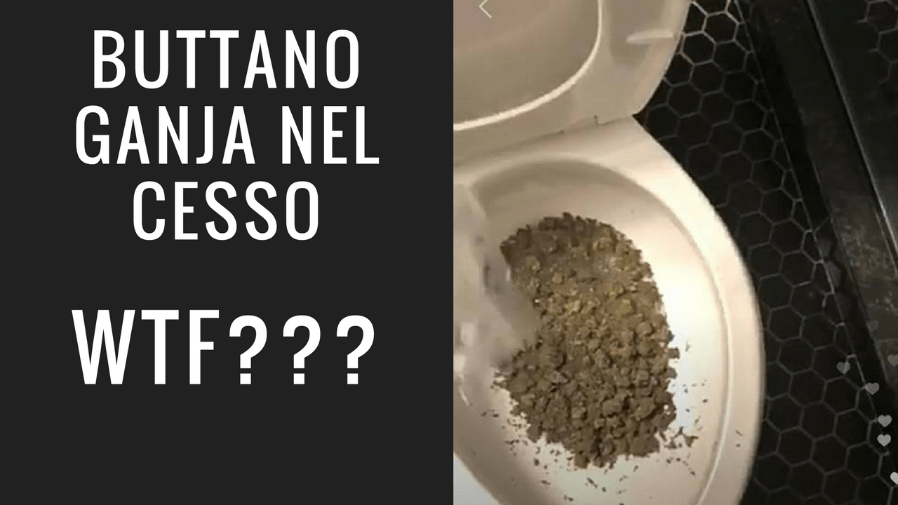 Photo of Buttare marijuana è la nuova tendenza instagram
