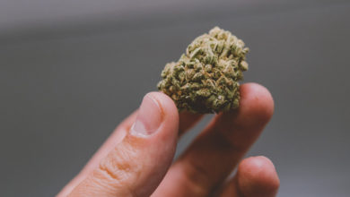 Photo of I rapper italiani che stanno investendo in marijuana